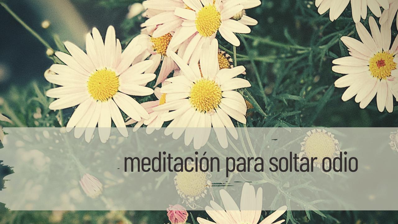 meditación para soltar odio