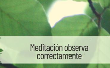 meditación observa correctamente